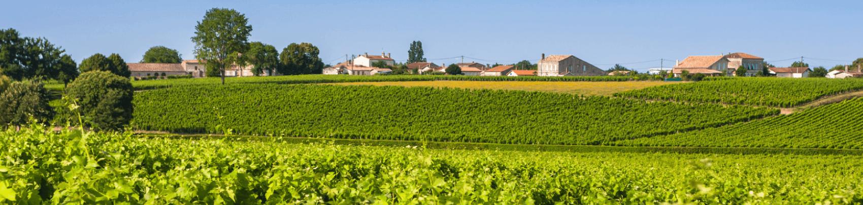 Bordeaux wijnstreek
